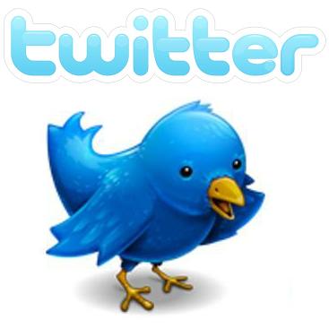 Twitter fuglen