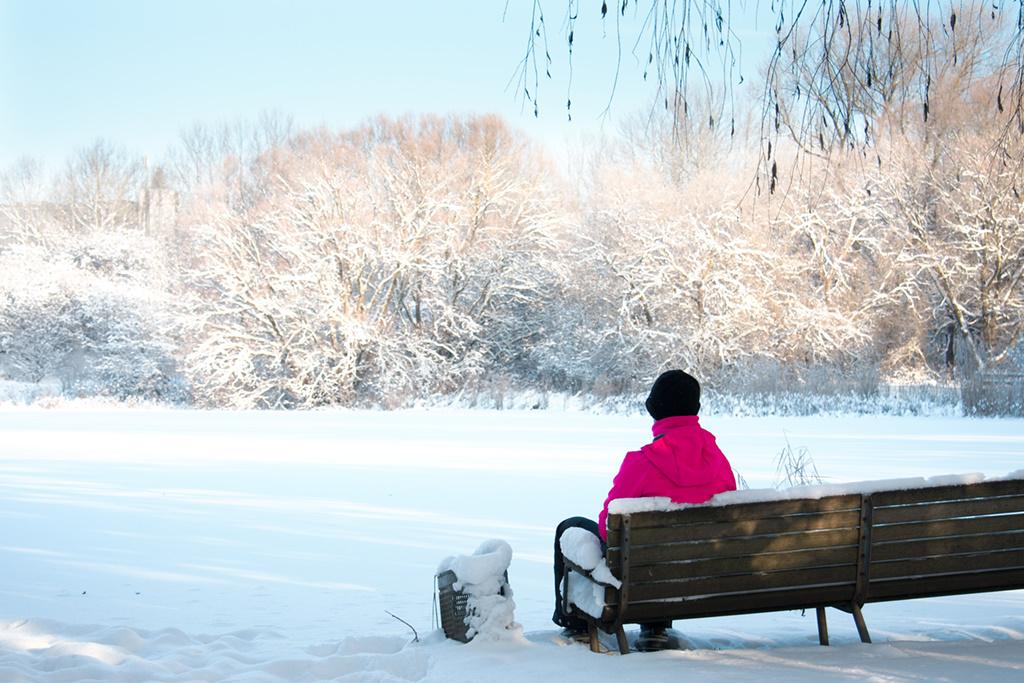 Vinterbilleder – Den hvide vinter